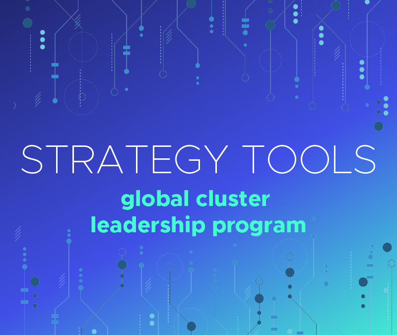 Strategy Tools Global Cluster Leadership Program [September, 2019]